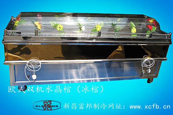 欧式双机水晶棺(冰棺)